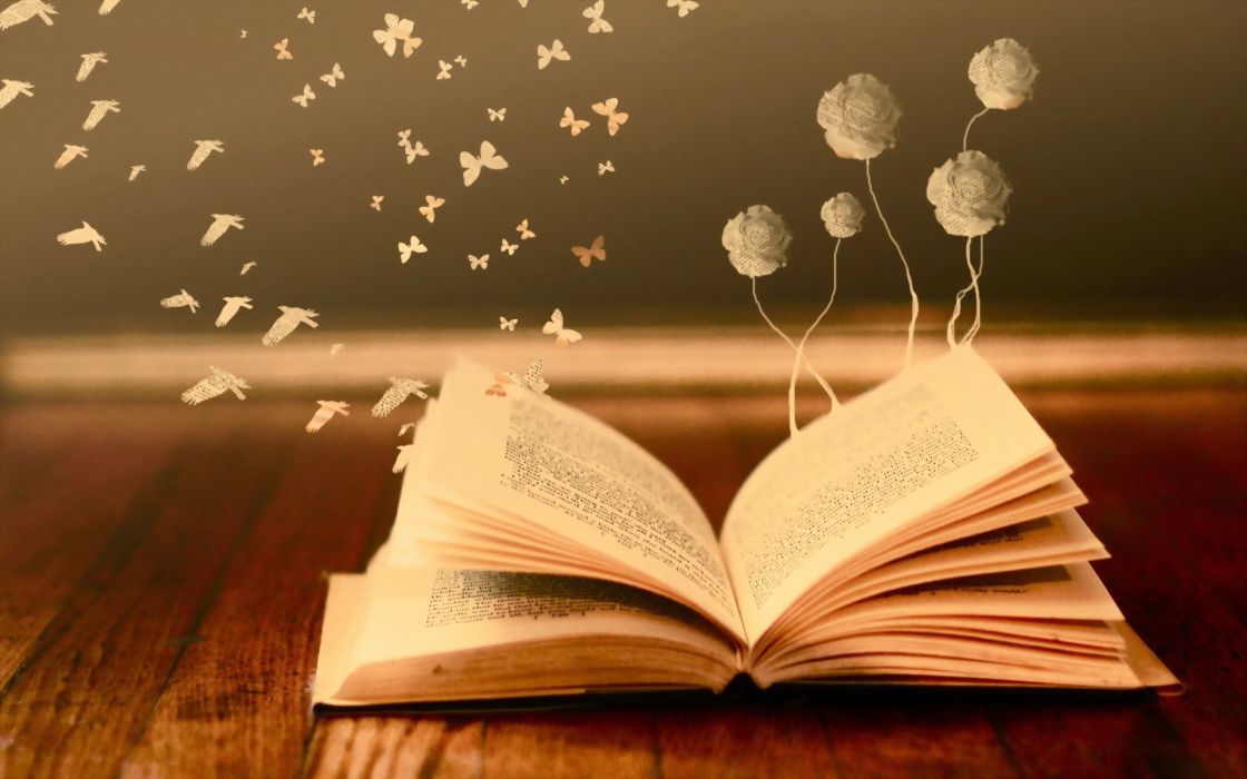 bokeh mood books read pages flowers butterfly fantasy wallpaper