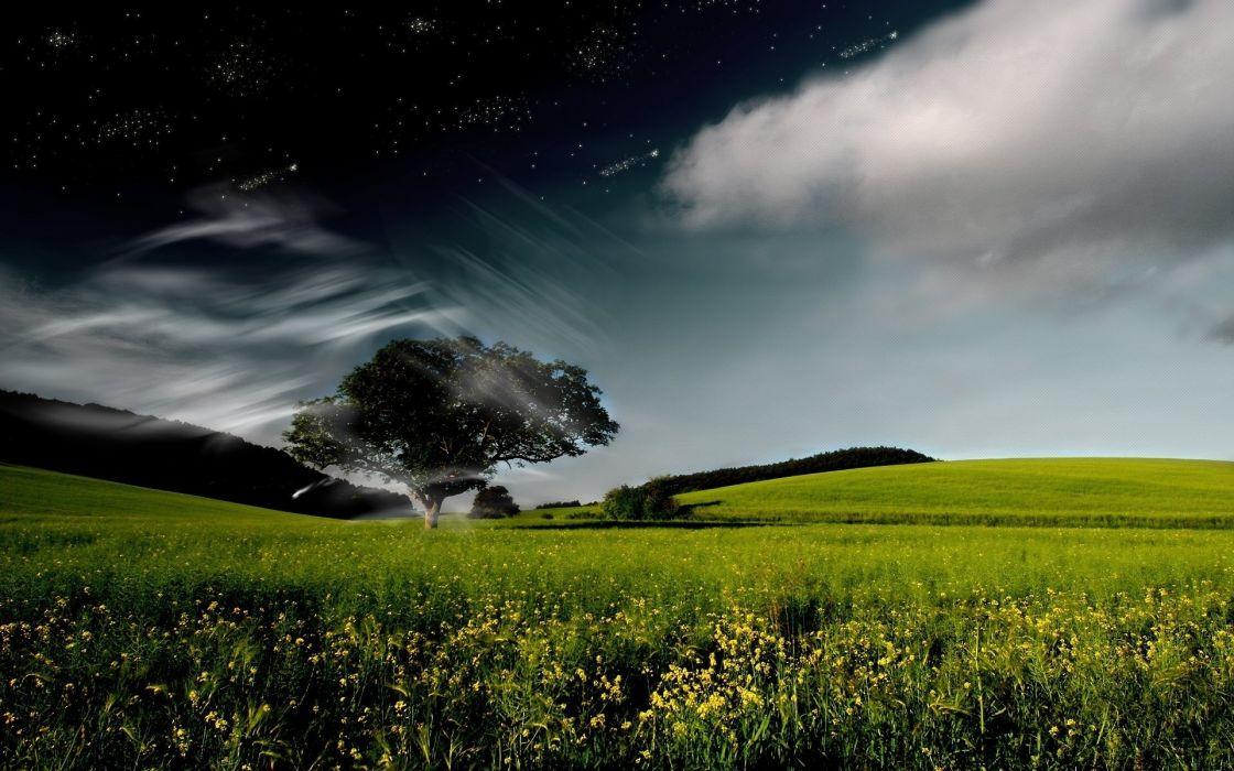 cg digital art manip trees fields flowers sky clouds night sky stars wallpaper