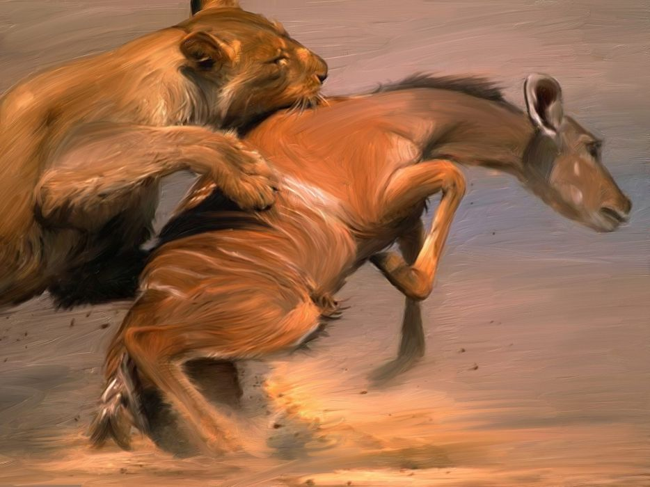 art painting lions hunt death kill africa wallpaper