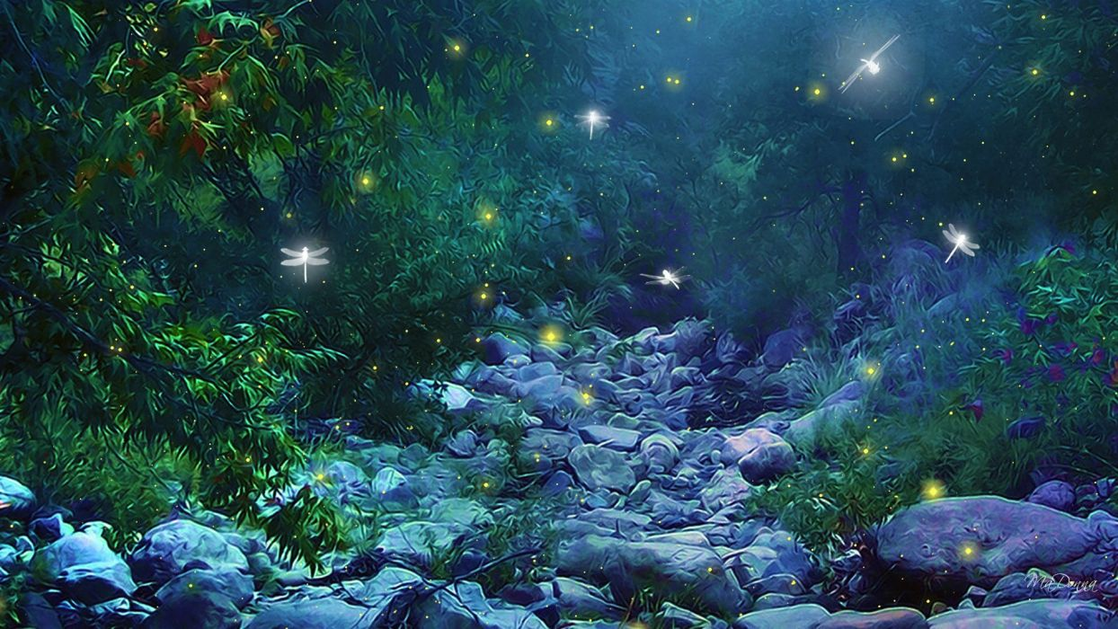 fantasy art nature trees forest woods magic insects firefly night glow lights wallpaper