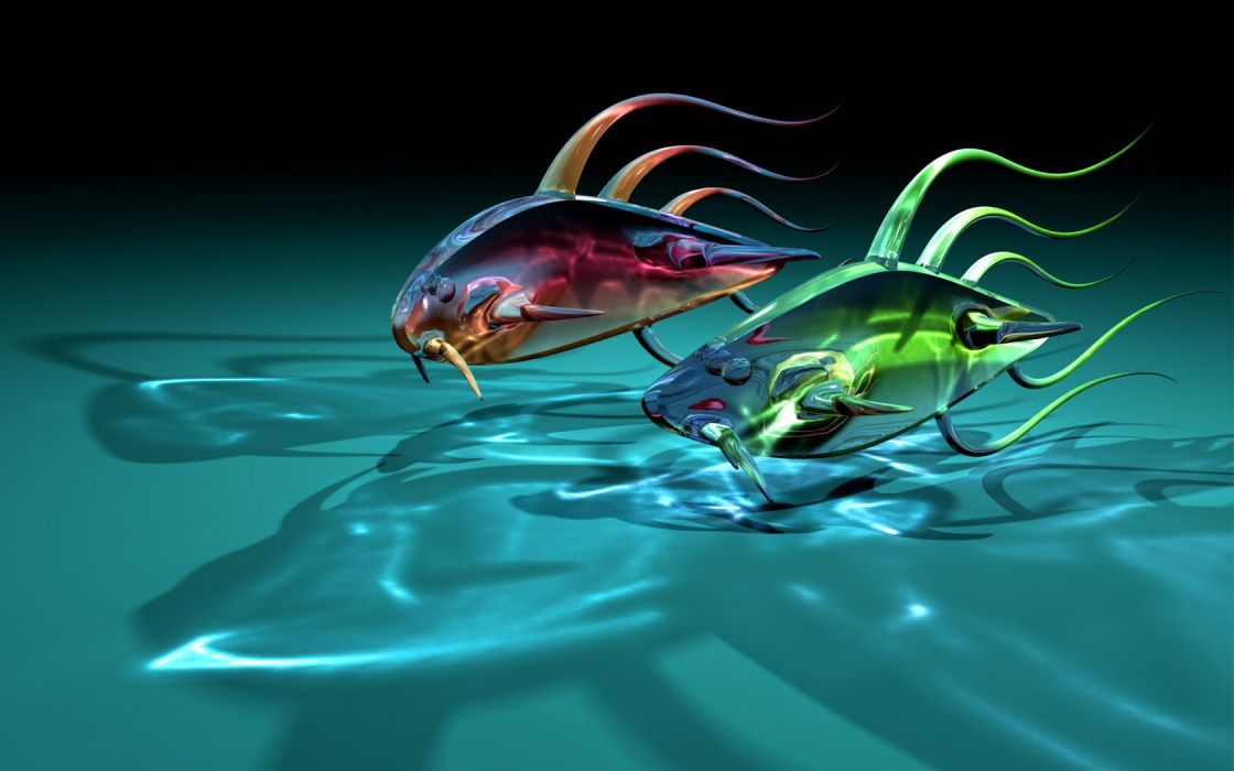 art fish goldfish two glass transparent shadow fishes wallpaper