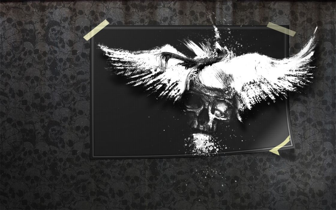 Skulls Dark Splatter Drawings horror wings gothic wallpaper
