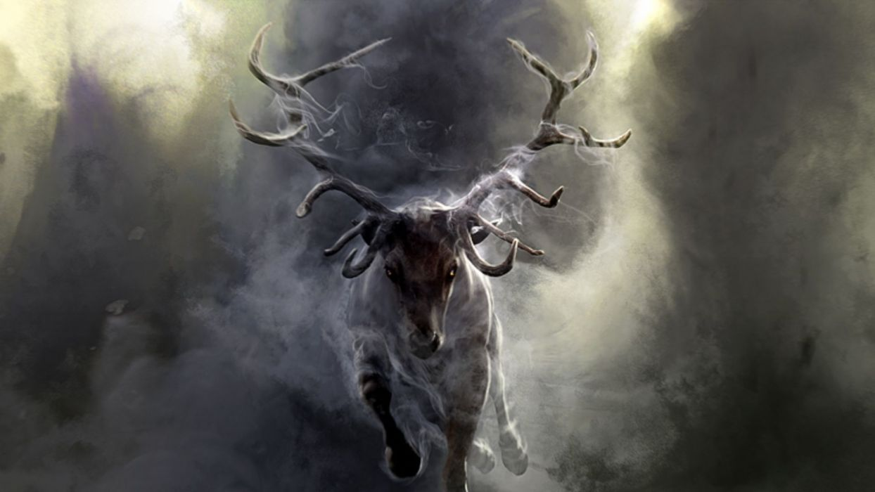art paintings deer nature smoke dark fog wallpaper