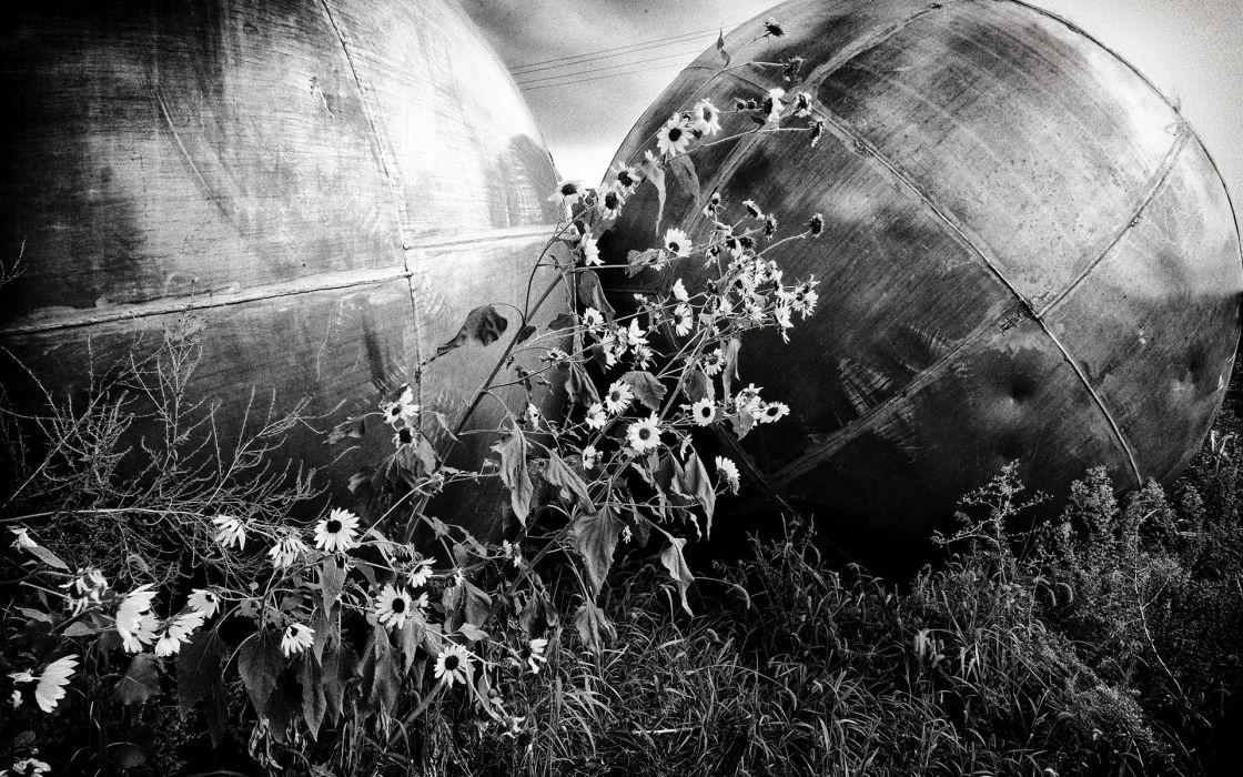 black white bw steel metal sphere globes circle sculpture flowers wallpaper