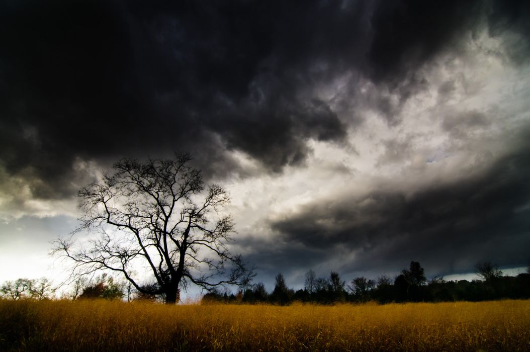 clouds storm hdr landscapes trees grass wallpaper