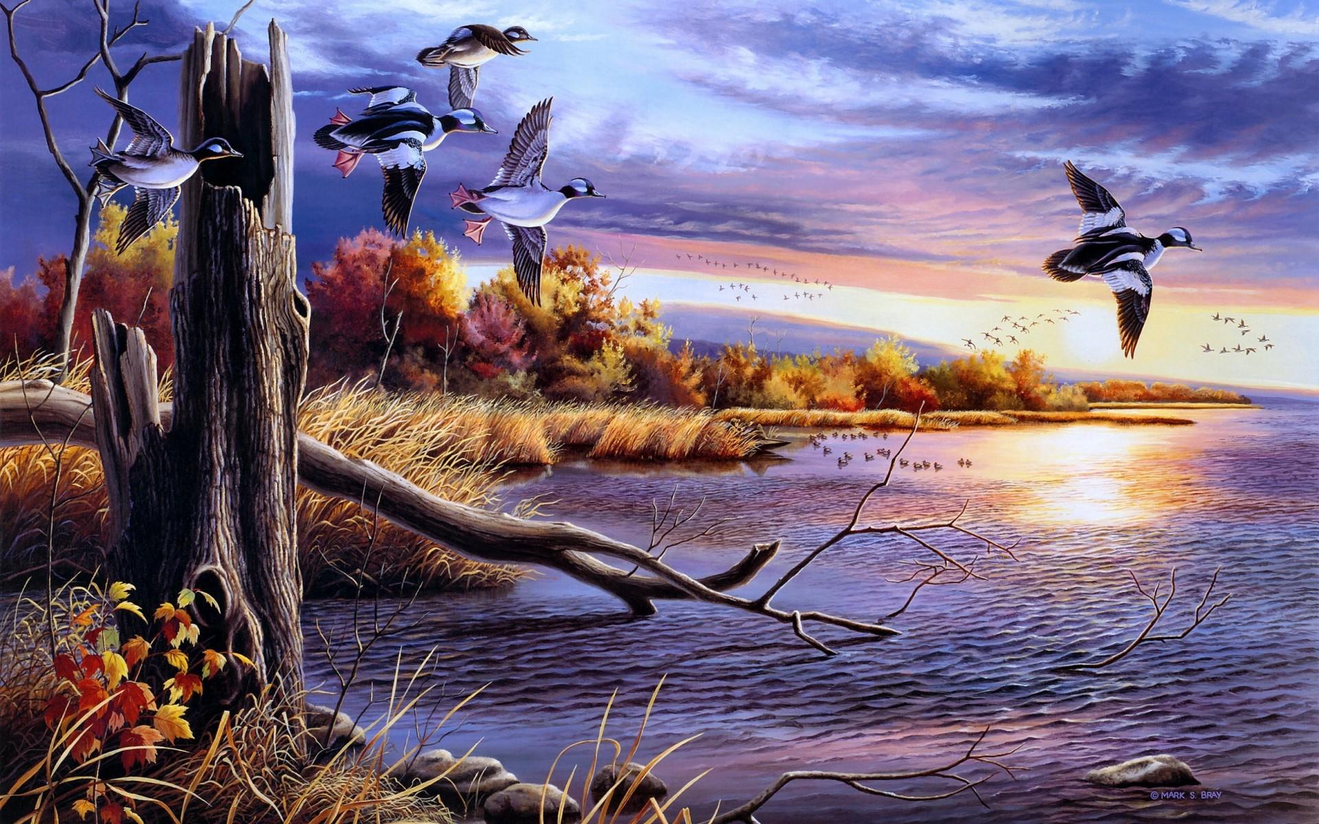 Birds Art Wallpaper 1920x1200 36466 Wallpaperup