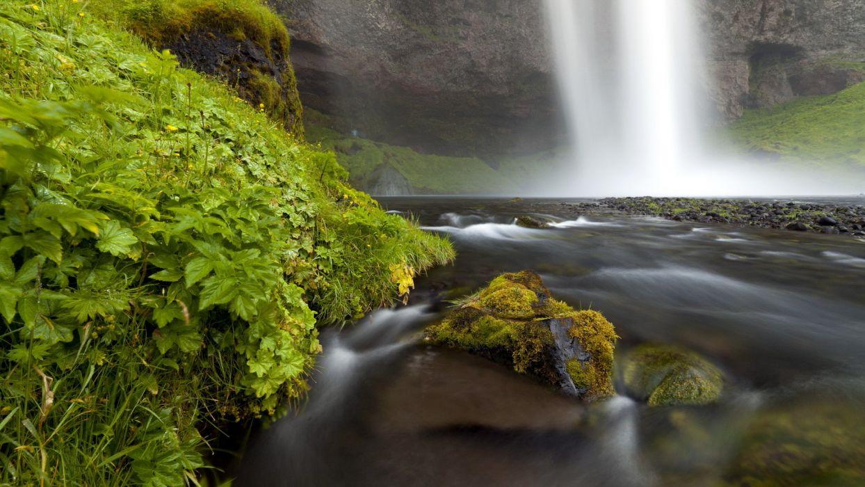 rivers moss wallpaper