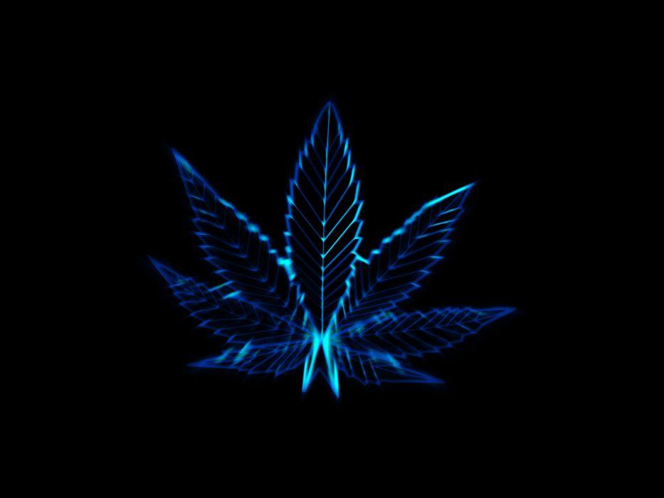 pot leaves marijuana drugs wallpaper
