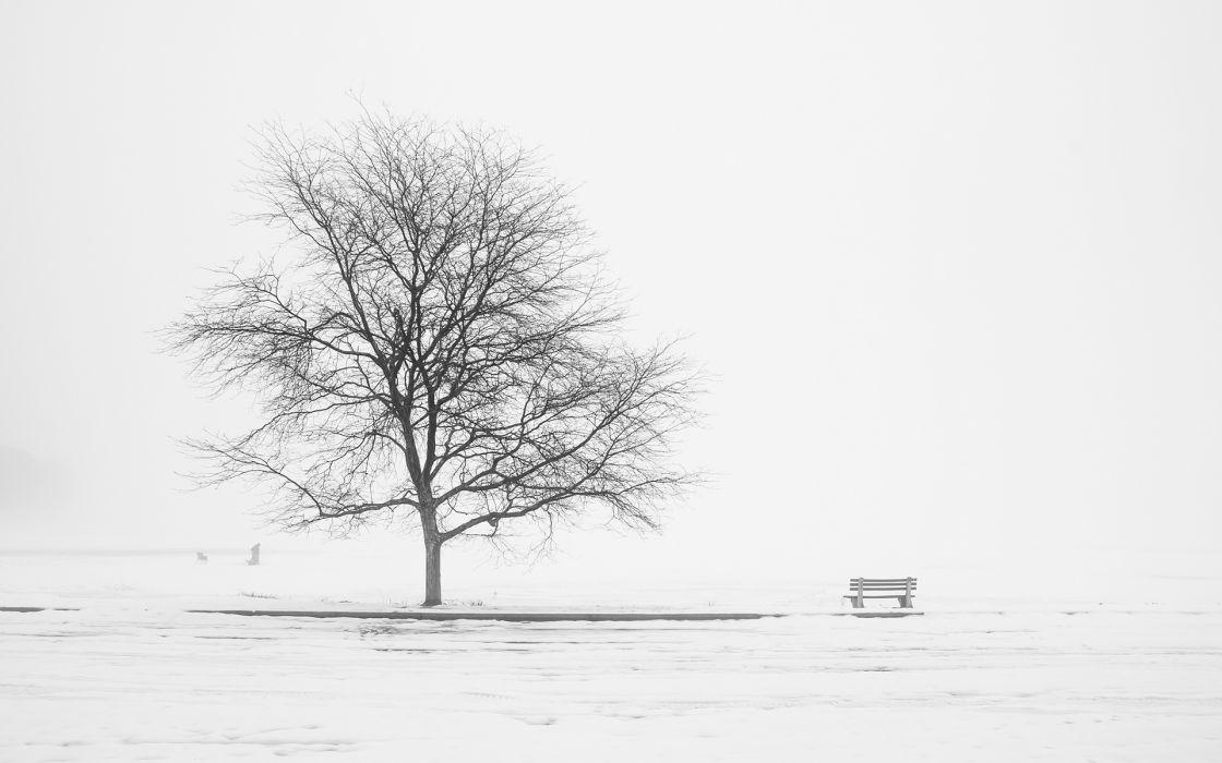 art mood landscapes trees bench wallpaper