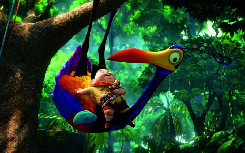 Up movies animation birds parrot wallpaper