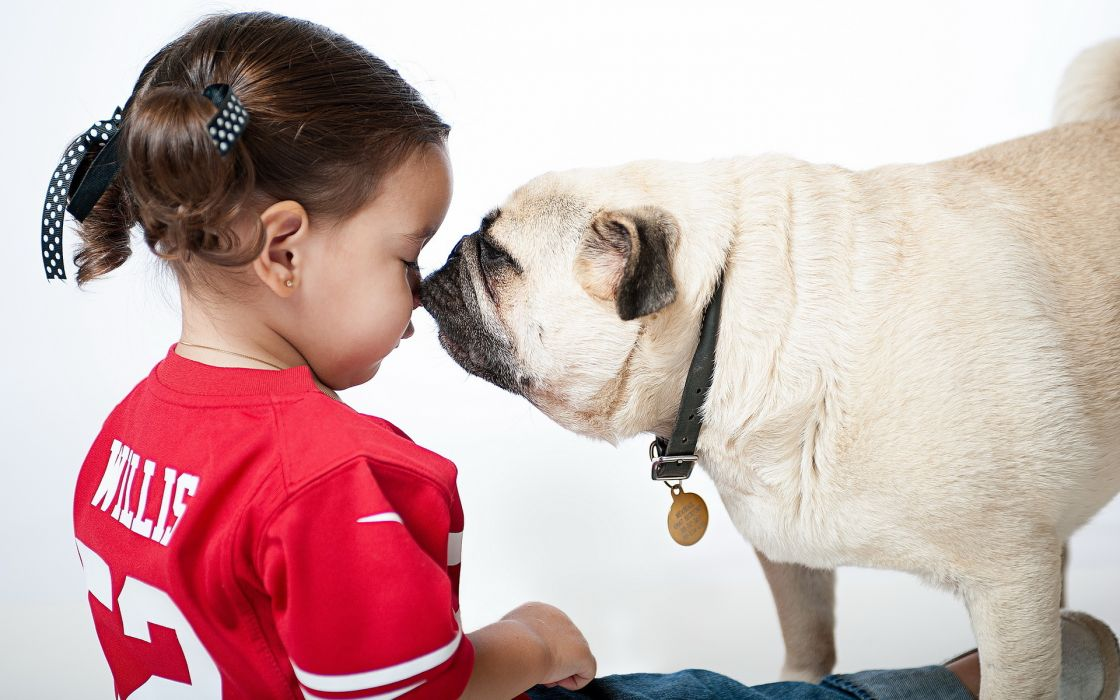 children cute dogs humor funny kiss love wallpaper