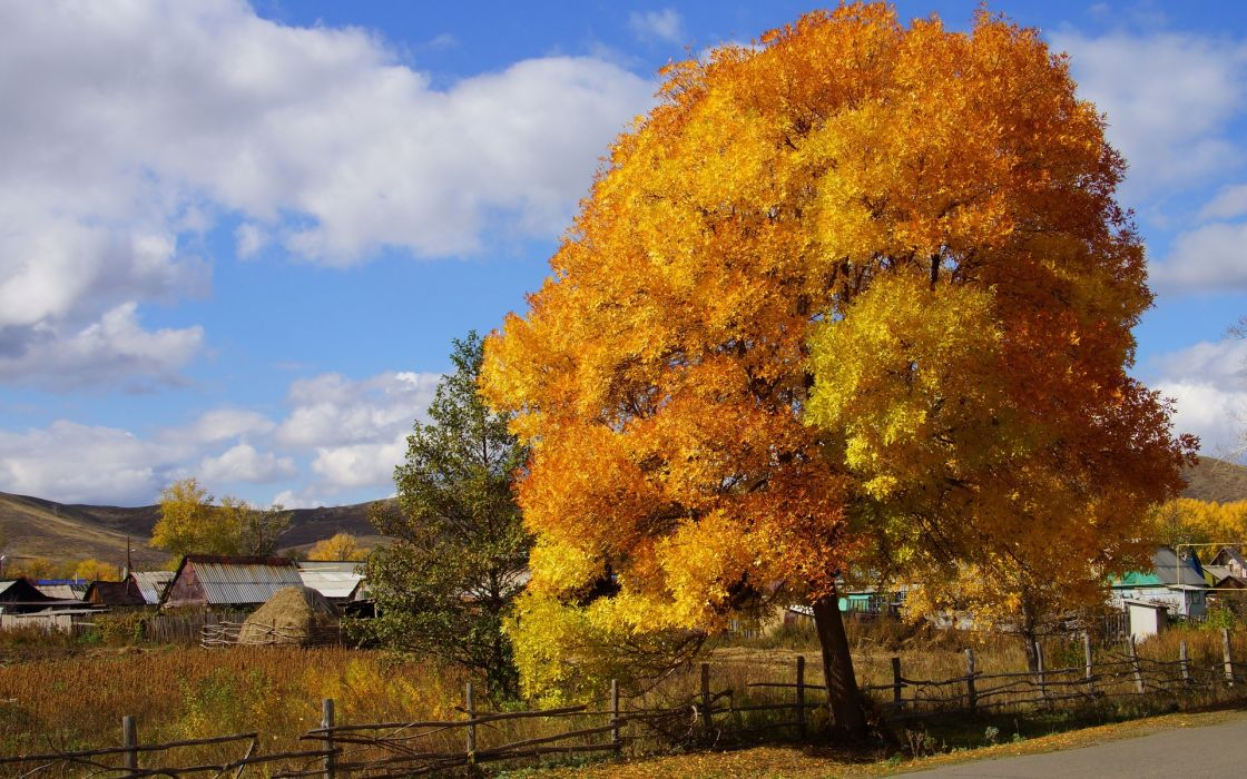 roads trees autumn fall rustic houses architecture sky clouds wallpaper