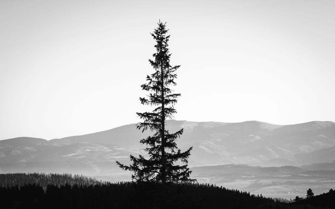 monochrome black white landscapes mountains sky silhouette wallpaper