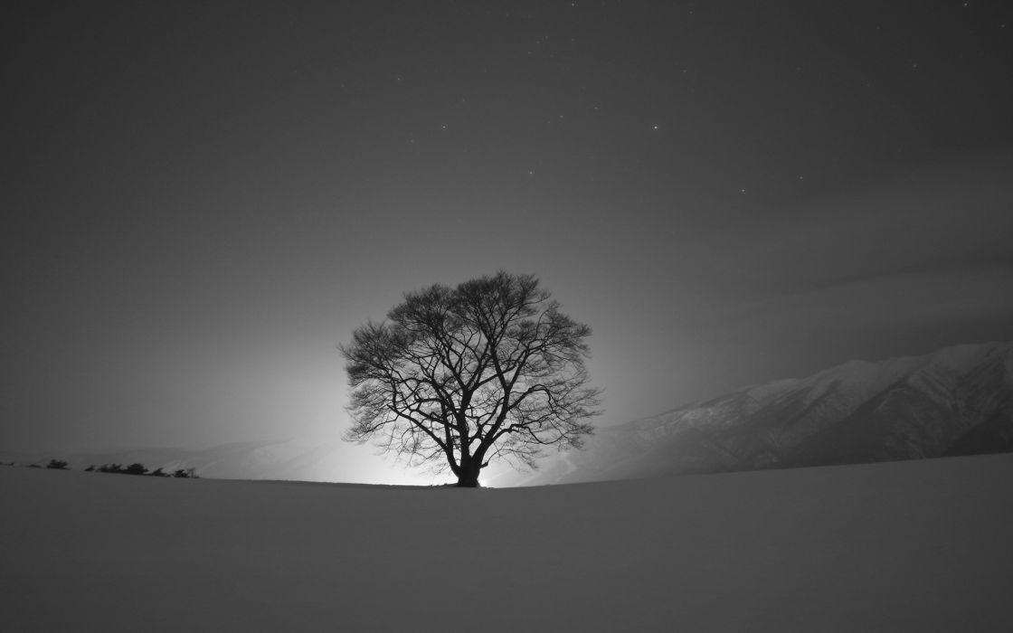 landscapes winter snow night silhouette sky wallpaper