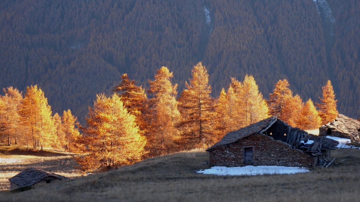 architecture nature landscapes trees mountains autumn fall wallpaper