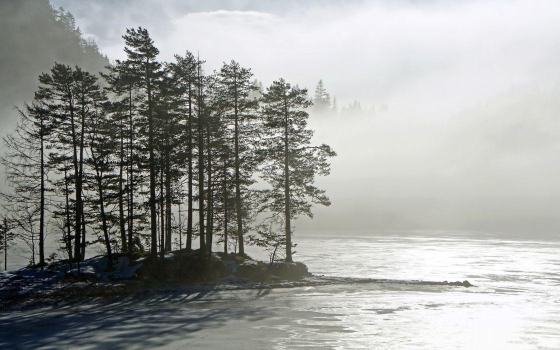 landscapes lakes islands trees forest woods fog mist wallpaper