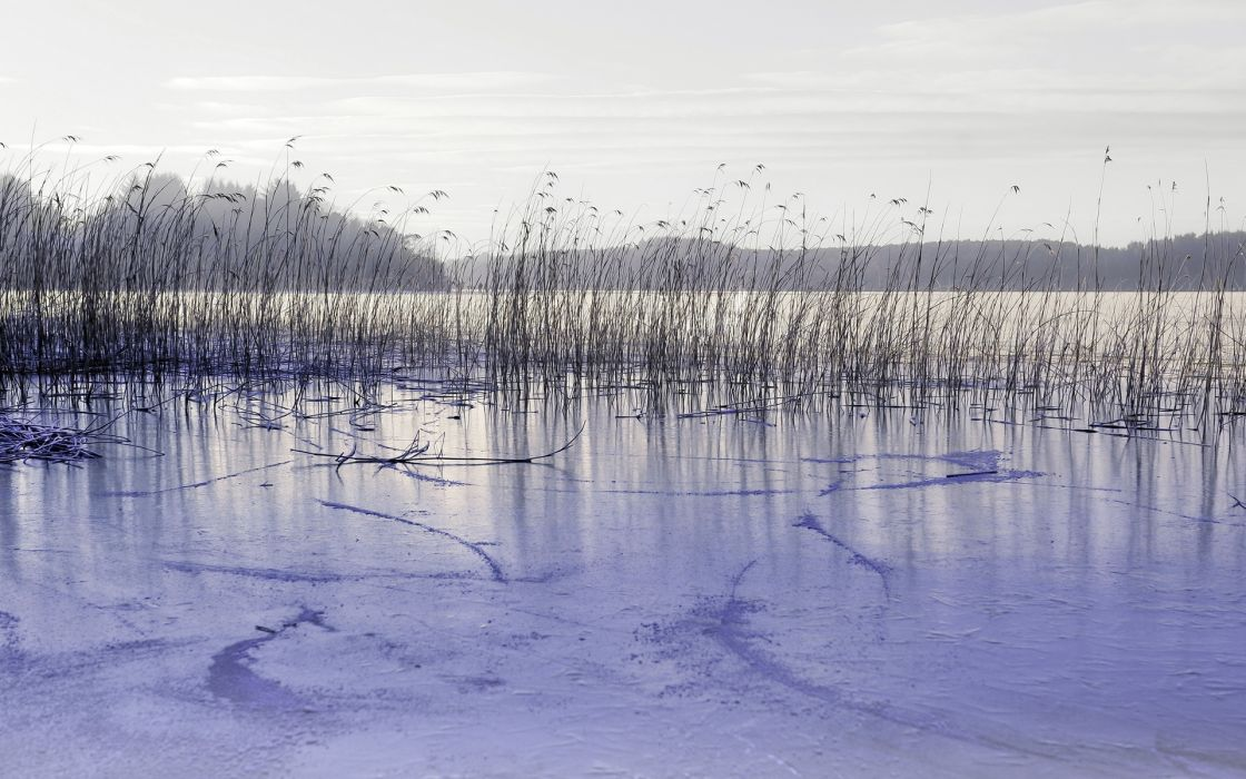 nature landscapes lakes ice grass reeds frozen sky hills wallpaper