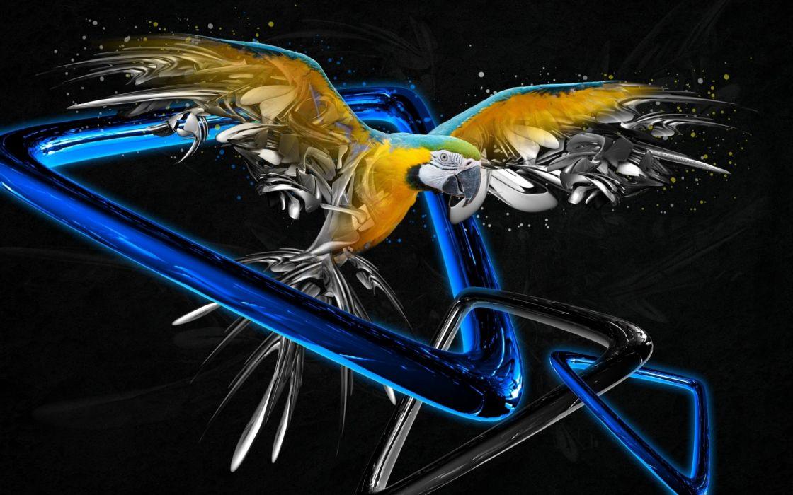 cg digital art 3d animals birds parrot wallpaper