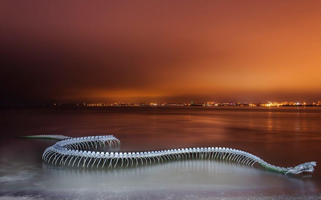 cg digital art manipulation sepent snake skeleton dark world cities beaches coast architecture buildings night lights wallpaper