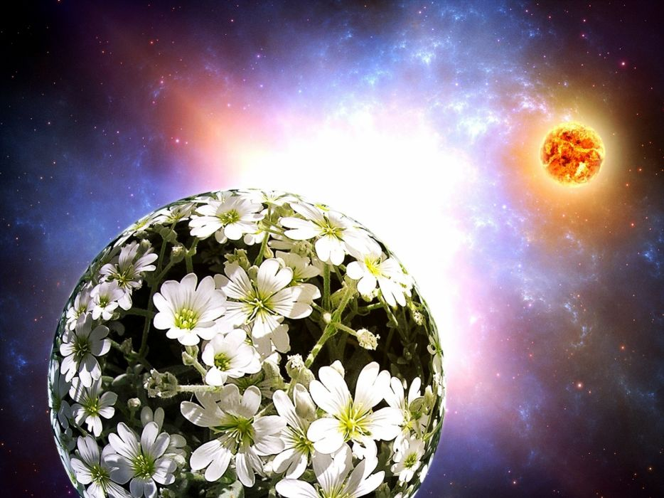 flowers cg digital art sci-fi space planets sun stars nebula wallpaper