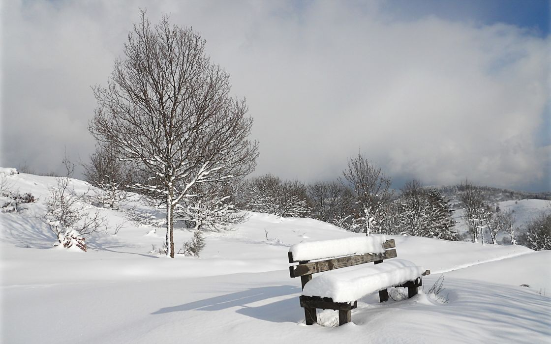 bench nature landscapes winter snow trees sky clouds wallpaper