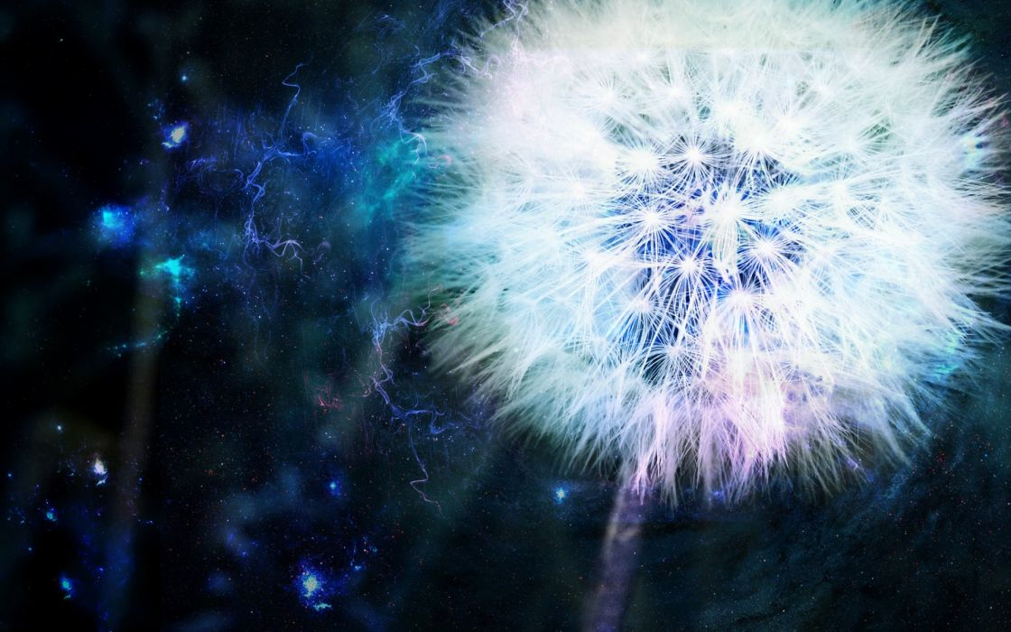 dandelion blue energy cg digital art manipulations nature plants sci-fi space stars psychedelic wallpaper