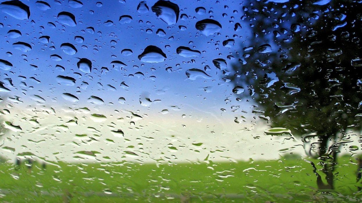 drops rain nature landscapes window glass trees spring seasons sky warer wallpaper