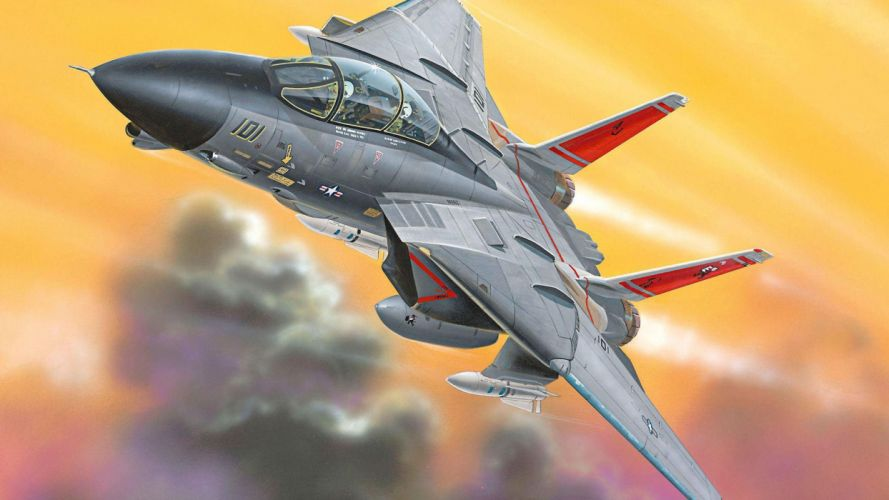 f-14 tomcat fighter jets weapons military pilots soldiers warriors flight sky air force airplanes wallpaper