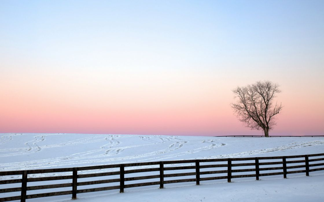 fence nature landscapes winter snow trees sky sunset sunrise wallpaper
