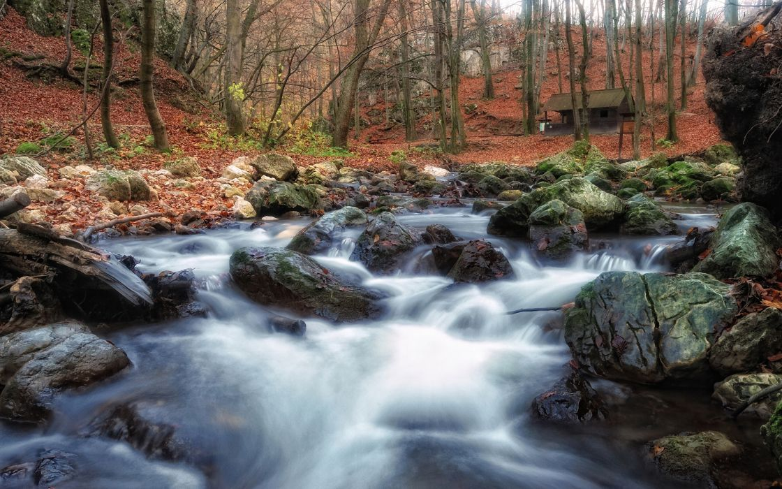forest trees woods nature landscapes rivers waterfall stone rock autumn fall seasons leaves wallpaper