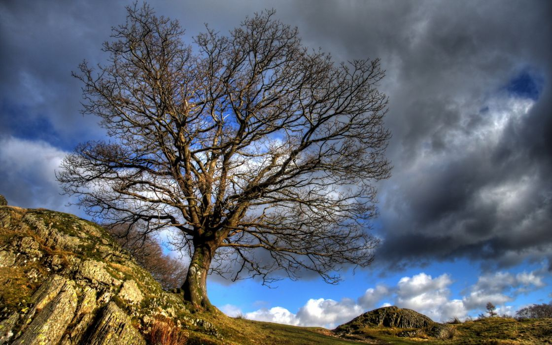 sky clouds hdr nature landscapes trees hill rock stone wallpaper