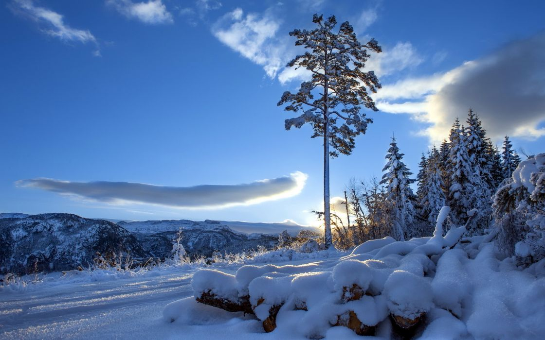 roads nature landscapes mountains trees winter snow hill sky clouds sunset sunrise wallpaper
