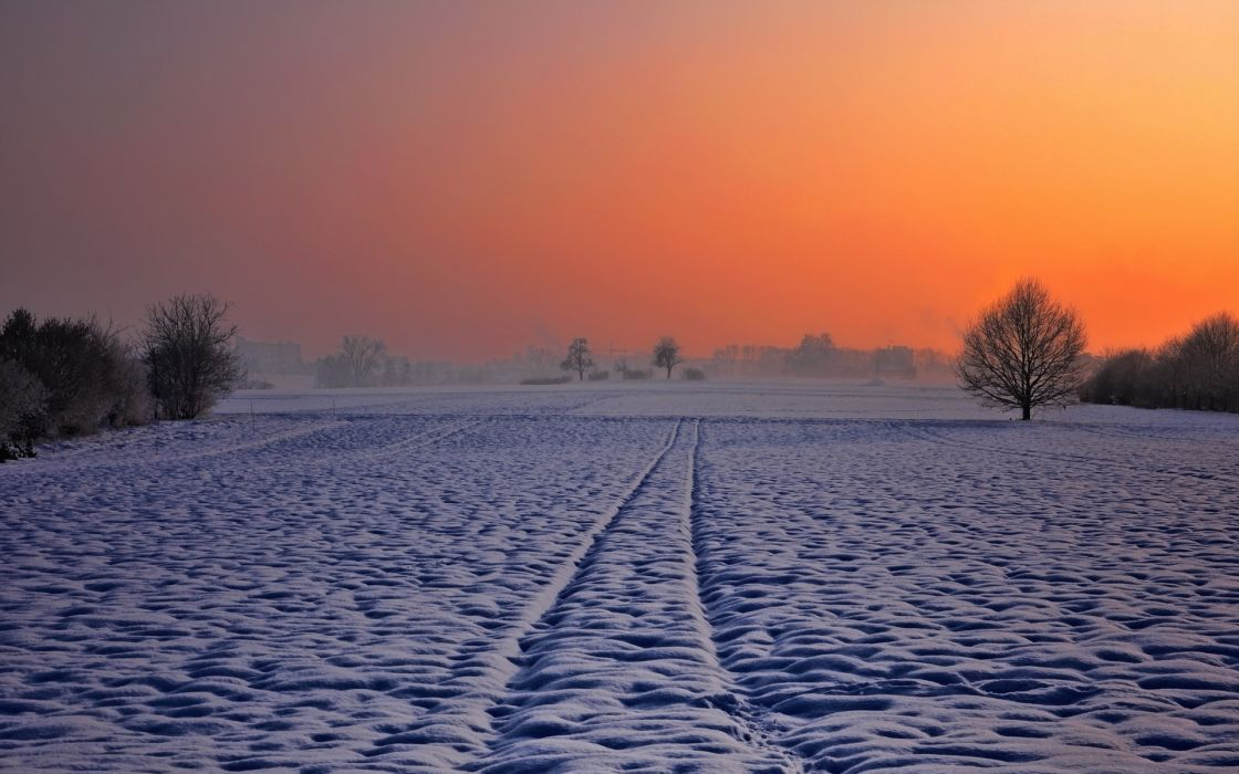 color nature landscapes fields trees winter snow sky sunset sunrise wallpaper
