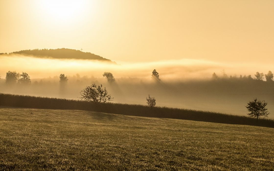 cross nature landscapes dawn morning sunrise trees sky fog grass field wallpaper