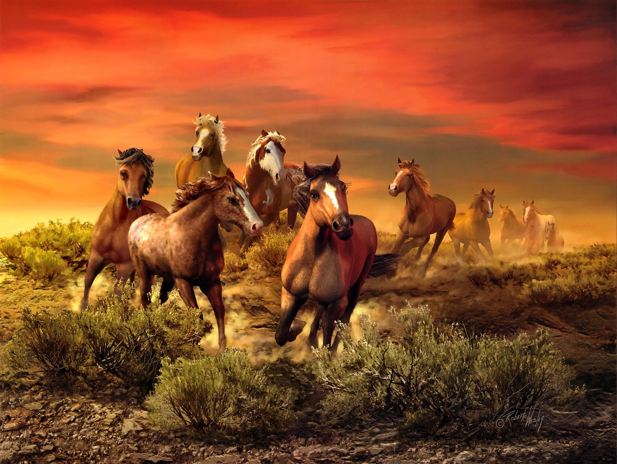 download wallpaper horses sunset - photo #30