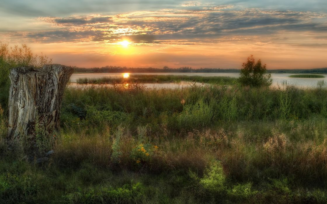 stump nature hdr landscapes lakes rivers islands reflection sky clouds sunset sunrise grass plants wallpaper