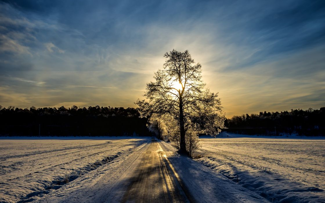 frost nature landscapes roads winter snow trees sky clouds sunset sunrise reflection wallpaper