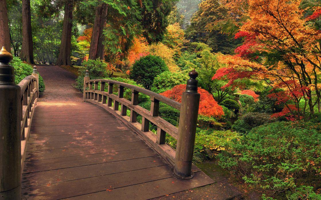 architecture bridges garden nature landscapes stream plants bush trees autumn fall maple forest color leaves wallpaper