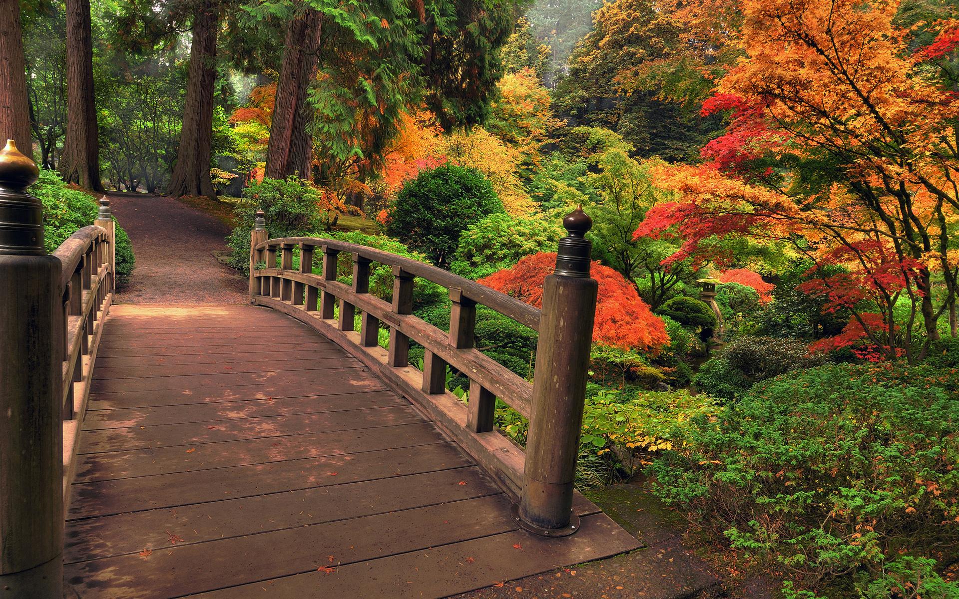 Architecture bridges garden nature landscapes stream plants bush ...