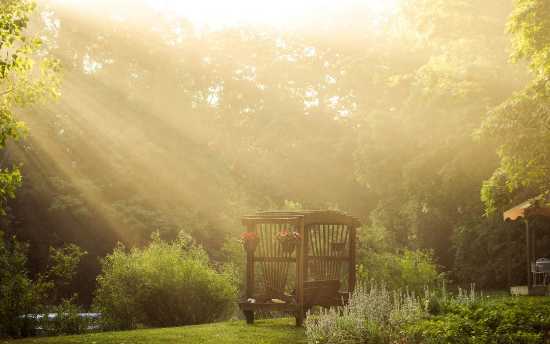bench garden rivers stream trees forest sunlight beams rays flowers landscapes wallpaper