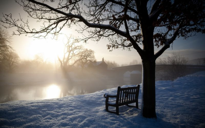 nature landscapes morning dawn sunrise trees bench winter snow rivers bridges fog wallpaper