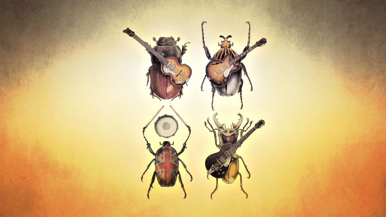 The Beatles Beetle insects guitar bands groups humor funny wallpaper