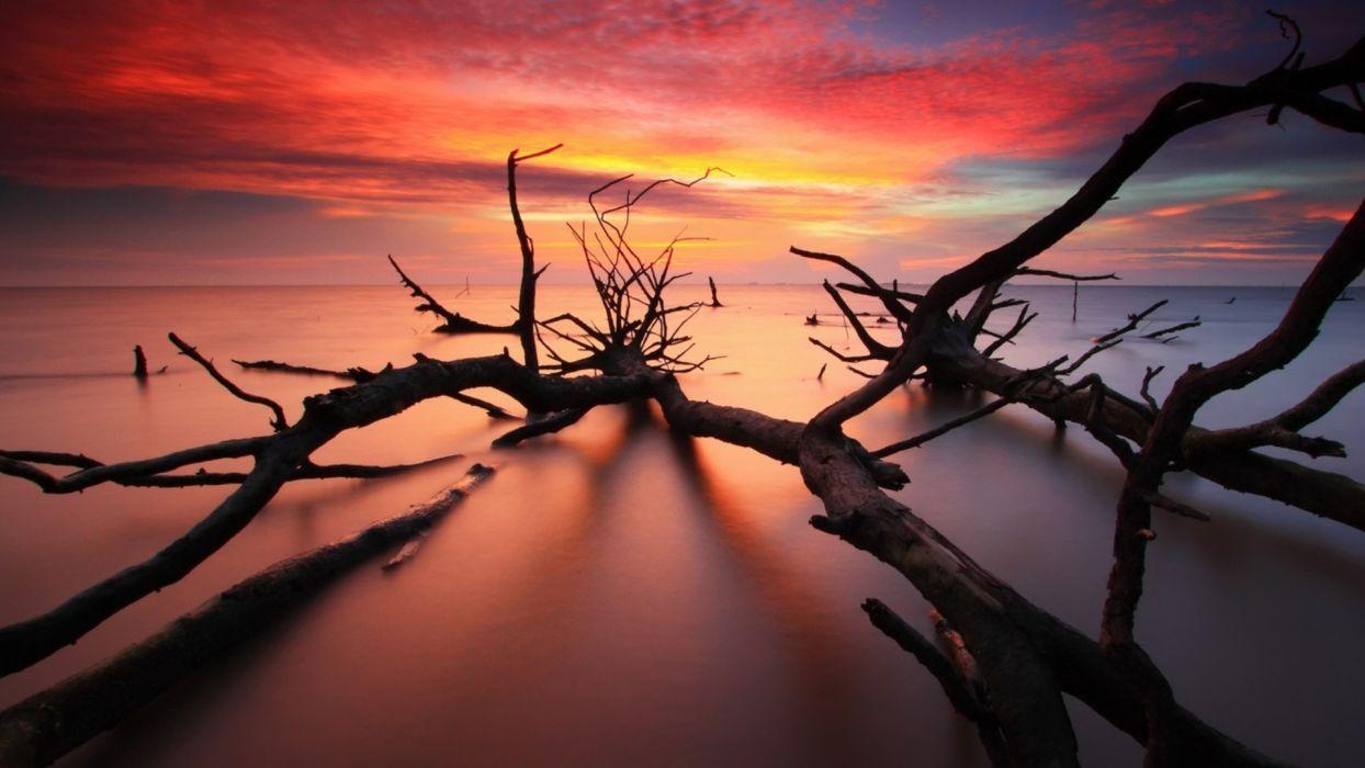 wood nature ocean sea sunrise sunset sky clouds timelapse color wallpaper