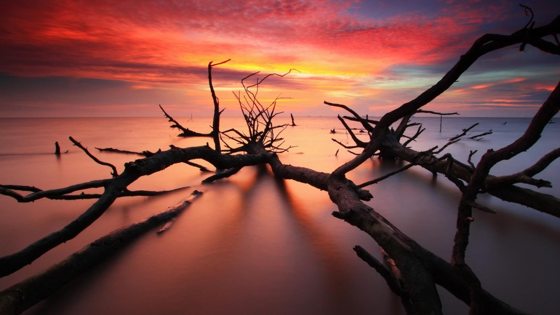 Sky Sunrise Sunrise Sunset Sky Clouds