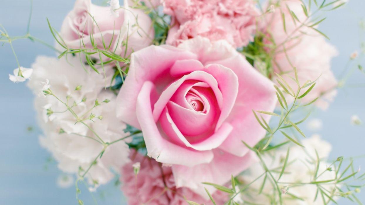roses flowers bouquet pink wallpaper