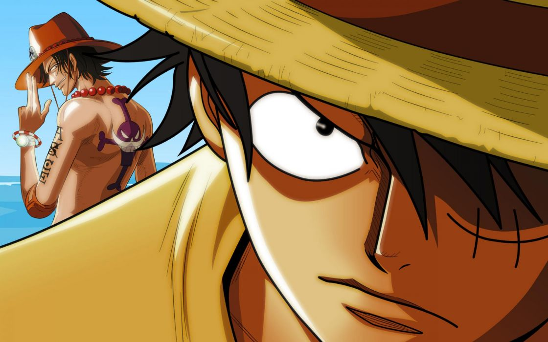 one piece monkey D luffy and brother wallpaper