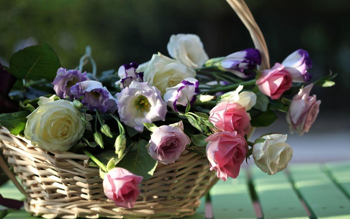 bouquet flowers basket still life roses wallpaper