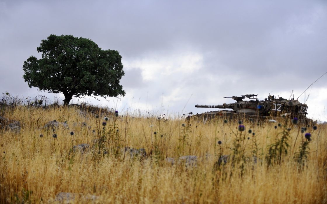 landscapes flowers military tanks weapons cannon trees wallpaper