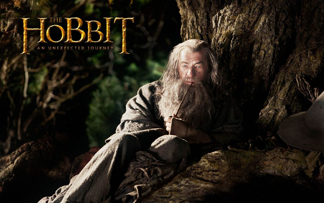 The Hobbit An Unexpected Journey movies fantasy Lord rings     e wallpaper