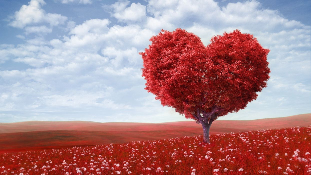 valentine's day love romance mood emotion heart trees landscapes fields flowers leaves wallpaper